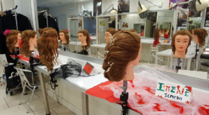 12/2020 - BAC PRO COIFFURE - PPCP
